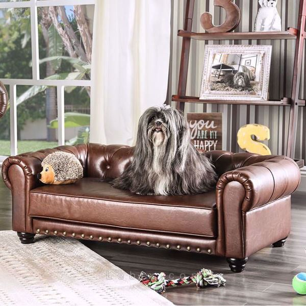 Furniture of America - Dewie Pet Sofa