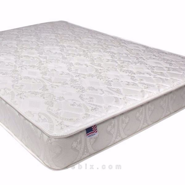 Furniture of America - Hibiscus Euro Pillow Top Mattress