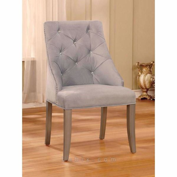 Furniture of America - Diocles Side Chair
